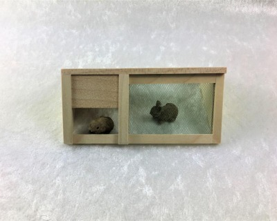 Hasen-Kaninchenauslauf