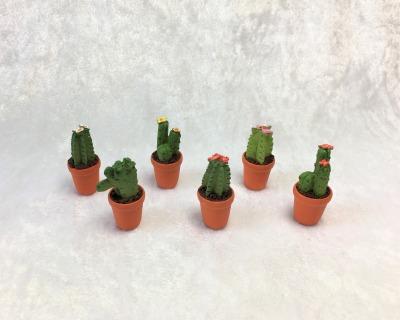 Kaktus Kakteen für die Puppenstube