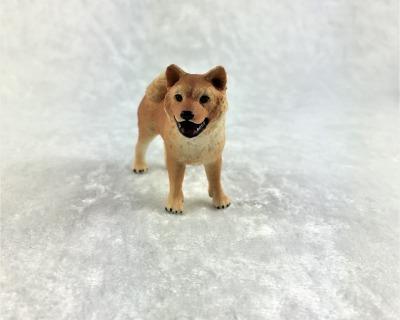Akita Hunderasse aus Japan in Miniatur