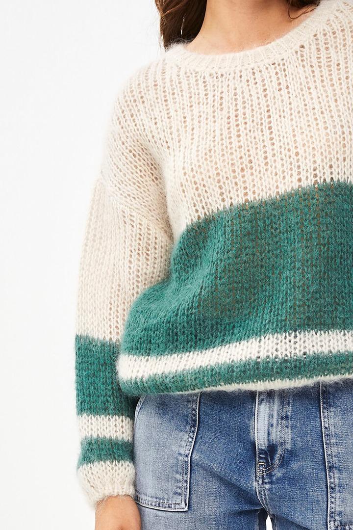 evi astro pullover - botanic
