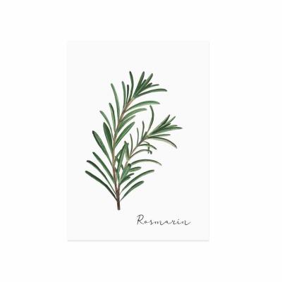 Postkarte - Rosmarin - Eulenschnitt