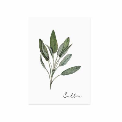 Postkarte - Salbei - Eulenschnitt