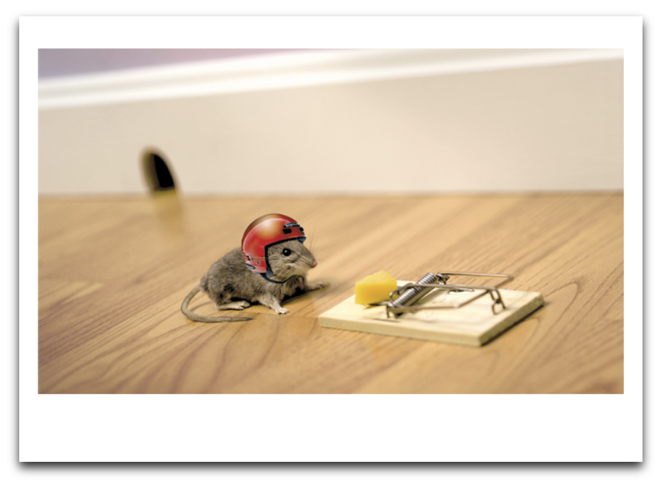 Mouse And Helmet Card