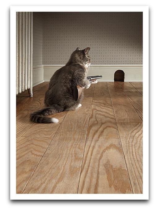Cat With Shotgun Card