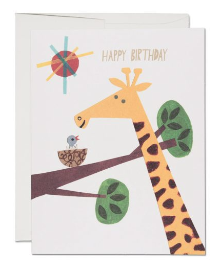 Giraffe Birthday - 1