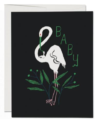 Egrets Card