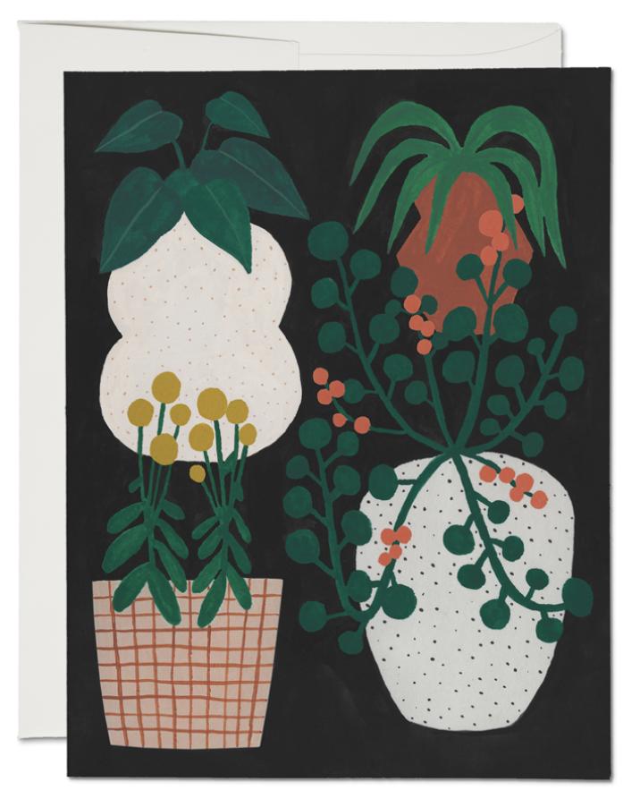 Indoor Plants Card