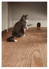 Cat with Shotgun - VE 6