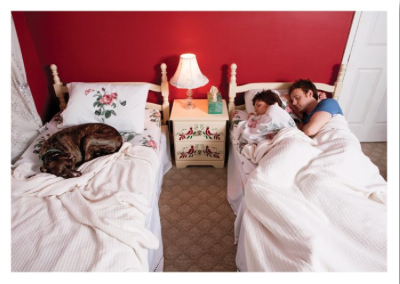 Dog Couple Beds
