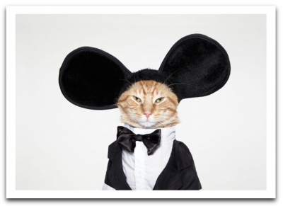 Cat Mouse Ears Card