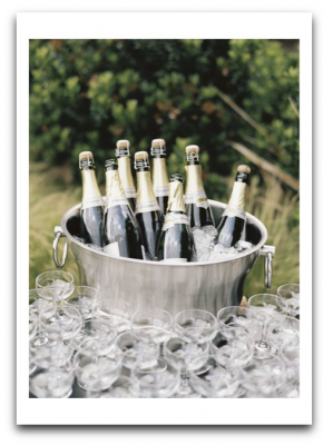 Champagne Bouquet Card Palm Press USA