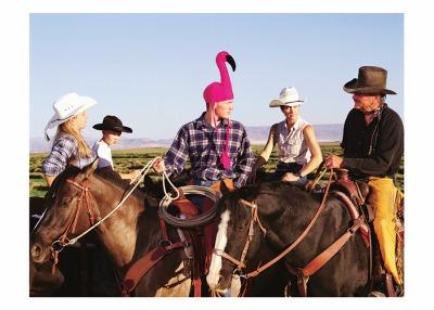 Flamingo Cowboy Card - Palm Press