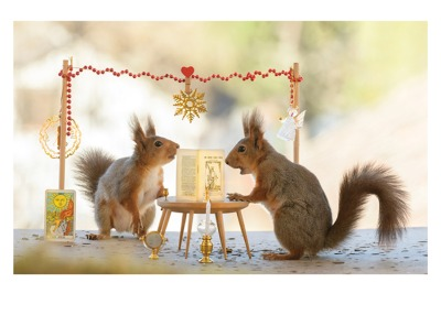 Squirrels Tarrot Card - Palm Press