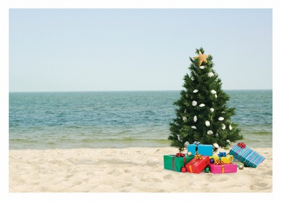Trees Gifts On Beach Card Palm