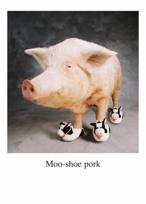 Moe Shoe Card - Palm Press