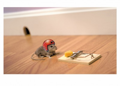 Mouse and Helmet Card Palm Press