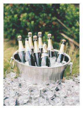 Champagne Bouquet Card - Palm Press