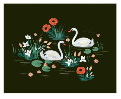 Swan - VE3