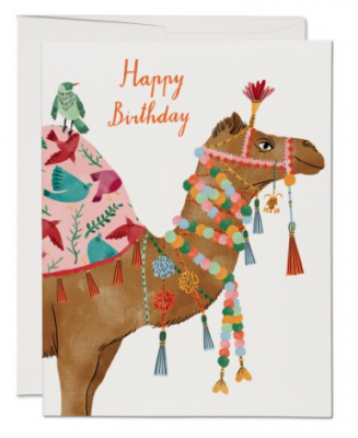 Camel Card - Red Cap Cards
