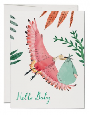 Bird with Baby Suit - Red Cap Cards