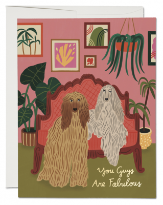 Afghan Dogs Card Red Cap Cards