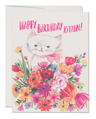 Happy B-Day Kitten Card - Red Cap Cards