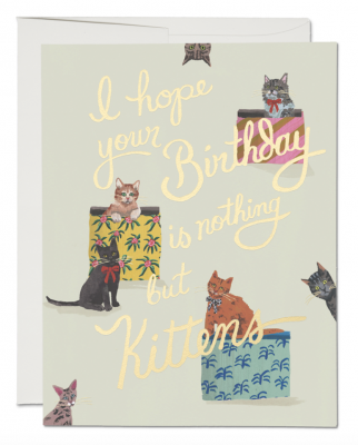 Nothing But Kittens Card Red Cap