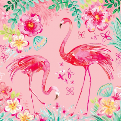 Flamingos - VE 6