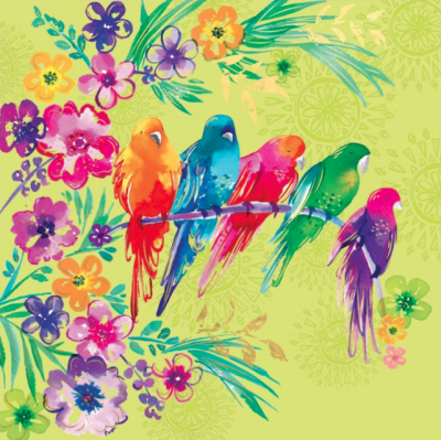 Tropical Birds - VE 6