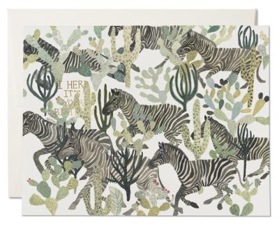 Zebra Herd Card Red Cap Cards